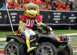 Atlanta Falcons Grill and Tailgating Accessories and Gifts
