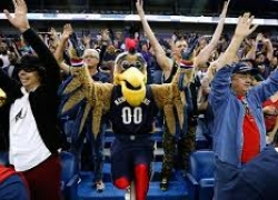 New Orleans Pelicans Grilling and Tailgating Accessories and Gifts