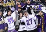 Baltimore Ravens Grill and Tailgating Accessories and Gifts