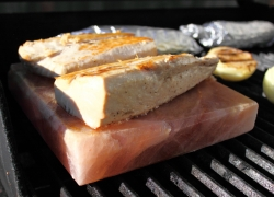 How to Grill with Himalayan Salt Blocks